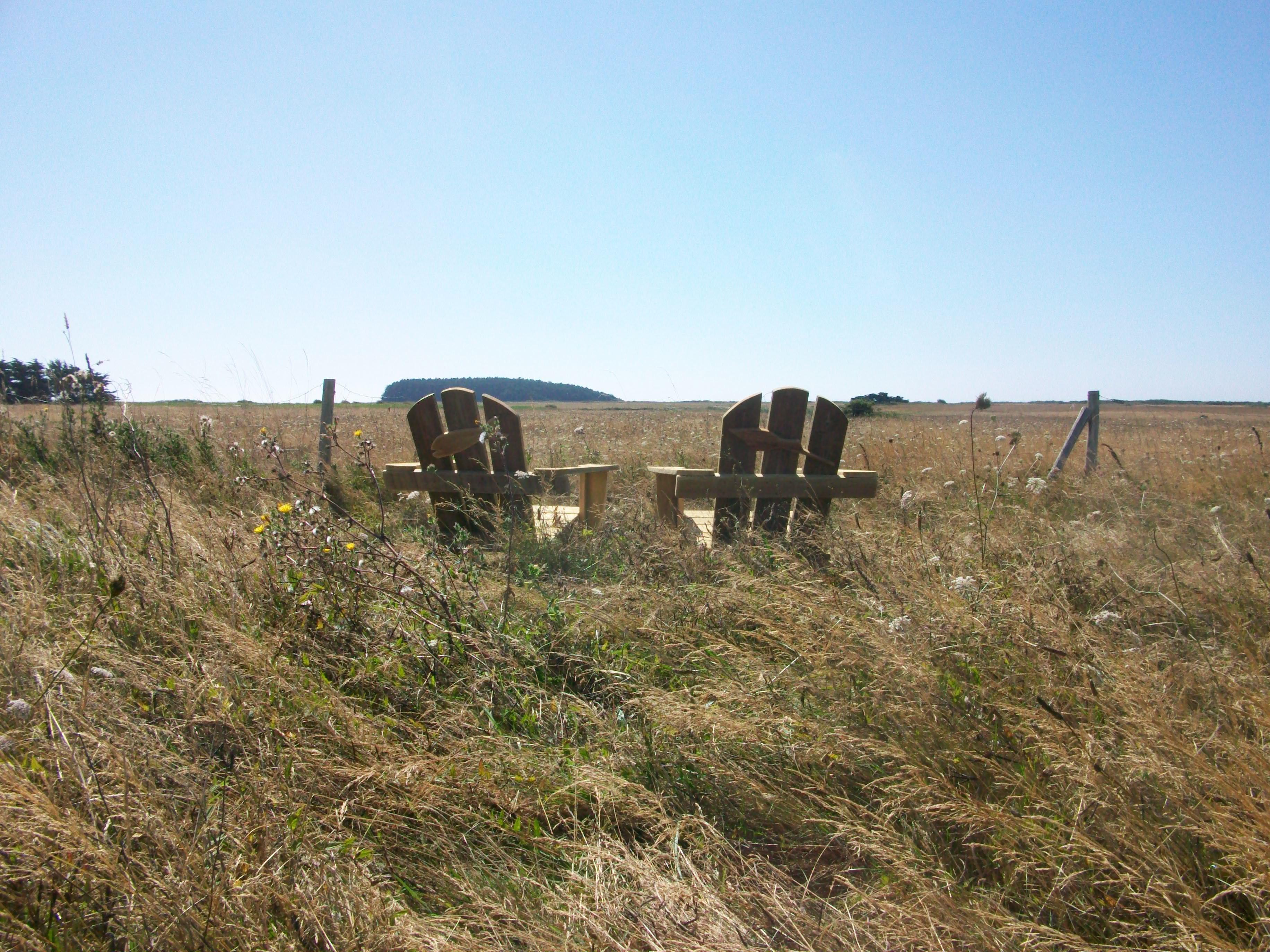 6-fauteuil-prairie